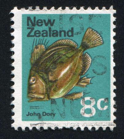 NEW ZEALAND - CIRCA 1979: stamp printed by New Zealand, shows fish, John Dory, circa 1979 photo