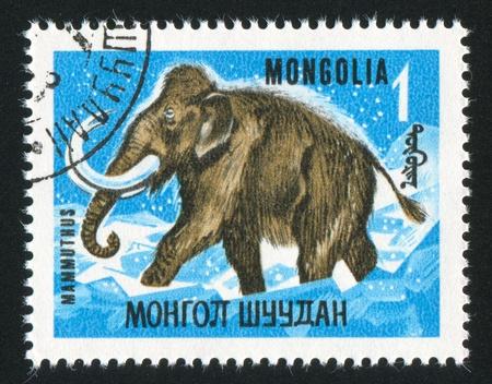 MONGOLIA - CIRCA 1967: stamp printed by Mongolia, shows mammoth, circa 1967 Stock Photo - 12743233