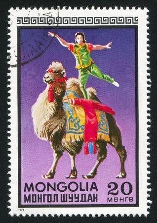 MONGOLIA - CIRCA 1973: stamp printed by Mongolia, shows acrobat on the camel, circa 1973 photo
