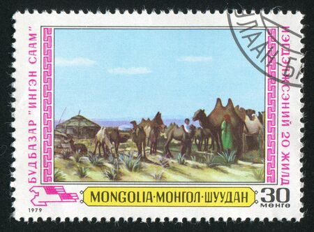 MONGOLIA - CIRCA 1979: stamp printed by Mongolia, shows milking, camels, circa 1979 Stock Photo - 12742322