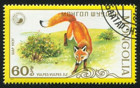 MONGOLIA - CIRCA 1987: stamp printed by Mongolia, shows  Adult fox, circa 1987 photo