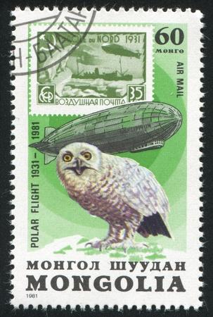 graf: MONGOLIA - CIRCA 1981: stamp printed by Mongolia, shows  Graf Zeppelin and snowy owl, circa 1981