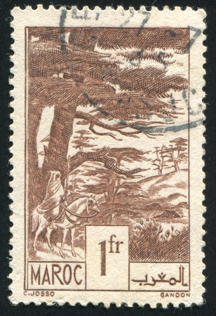 cedars: FRENCH MOROCCO - CIRCA 1939: stamp printed by French Morocco, shows Cedars, circa 1939
