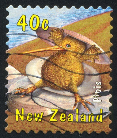 ostracean: NEW ZEALAND - CIRCA 2000: stamp printed by New Zealand, shows Kiwi with Pipis, circa 2000 Stock Photo