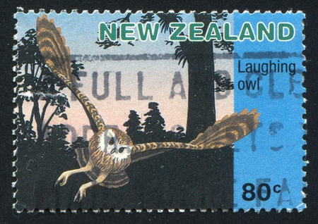 NEW ZEALAND CIRCA 1996: stamp printed by New Zealand, shows  owl, circa 1996 photo