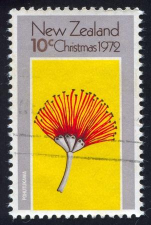 caulis: NEW ZEALAND — CIRCA 1972: stamp printed by New Zealand, shows tree pohutukawa, circa 1972