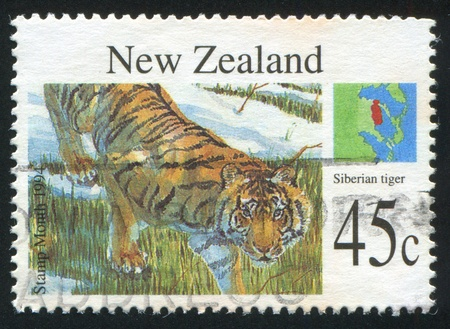 slink: NEW ZEALAND - CIRCA 1994: stamp printed by New Zealand, shows Wild animals, Siberian tiger, circa 1994
