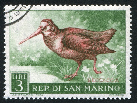 SAN MARINO - CIRCA 1960: stamp printed by San Marino, shows Woodcock, circa 1960 photo