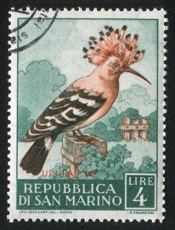 SAN MARINO - CIRCA 1960: stamp printed by San Marino, shows Hoopoe, circa 1960 Stock Photo - 12999154