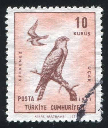 TURKEY- CIRCA 1967: stamp printed by Turkey, shows kestrel, circa 1967 photo