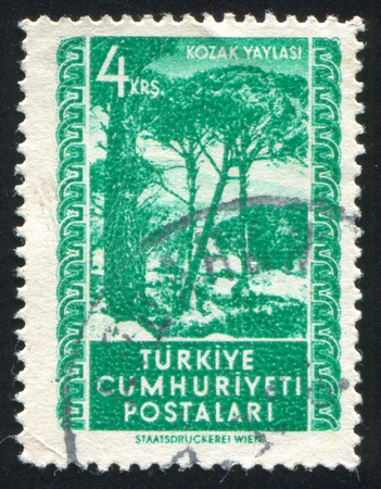 TURKEY - CIRCA 1952: stamp printed by Turkey, shows Kozak plateau, circa 1952 photo