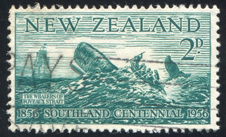 NEW ZEALAND - CIRCA 1956: stamp printed by New Zealand, shows Whalers of Foveaux Strait, circa 1956 Stock Photo - 13099042