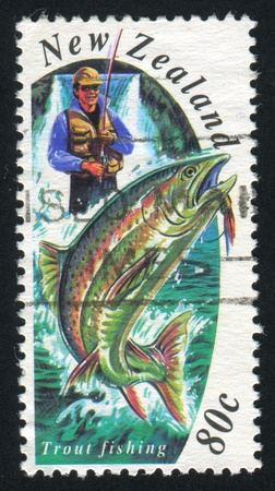 NEW ZEALAND - CIRCA 1993: stamp printed by New Zealand, shows Trout Fishing, circa 1993 photo