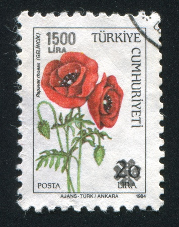 TURKEY- CIRCA 1984: stamp printed by Turkey, shows red poppy, circa 1984 photo