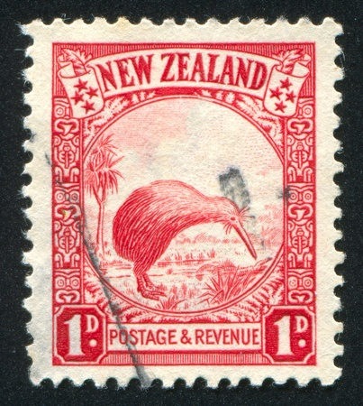 NEW ZEALAND - CIRCA 1935: stamp printed by New Zealand, shows Kiwi and Cabbage Palm, circa 1935