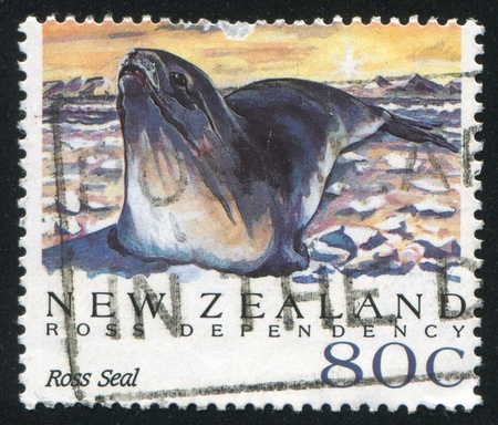NEW ZEALAND - CIRCA 1992: stamp printed by New Zealand, shows Antarctic Seals, Ross seal, circa 1992 Stock Photo - 13353745