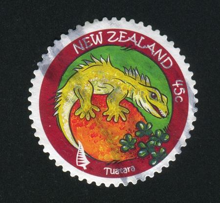 NEW ZEALAND - CIRCA 2007: stamp printed by New Zealand, shows Tuatara, circa 2007