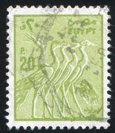 abjad: EGYPT - CIRCA 1953: stamp printed by Egypt, shows bird, circa 1953. Editorial