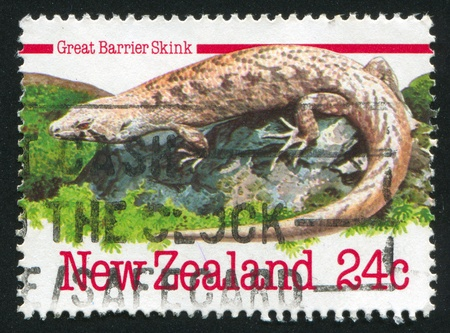 NEW ZEALAND - CIRCA 1984: stamp printed by New Zealand, shows Great barrier skink, circa 1984