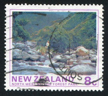 NEW ZEALAND - CIRCA 1975: stamp printed by New Zealand, shows North West Nelson State Forest Park, circa 1975 photo