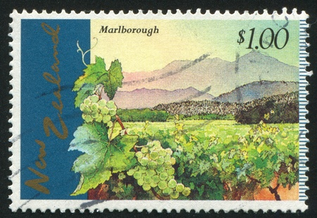 NEW ZEALAND - CIRCA 1997: stamp printed by New Zealand, shows Marlborough Vineyards, circa 1997 Stock Photo - 13591696
