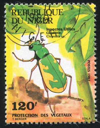 tiger beetle: NIGER - CIRCA 1987: stamp printed by Niger shows Tiger Beetle, circa 1987