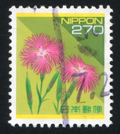 pinks: JAPAN - CIRCA 1985: stamp printed by Japan shows Pinks, circa 1985