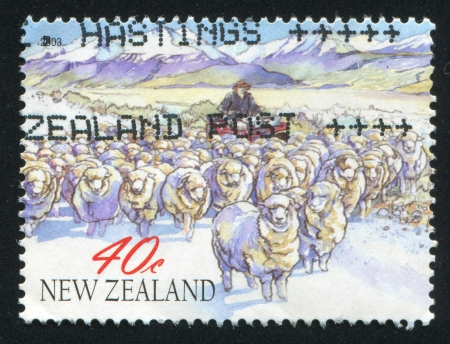 NEW ZEALAND - CIRCA 2003: stamp printed by New Zealand, shows New Year 2003 (Year of the Ram), Sheep in high country, circa 2003 photo