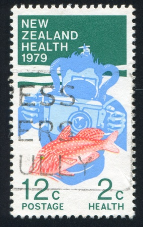caudal fin: NEW ZEALAND - CIRCA 1979: stamp printed by New Zealand, shows Underwater photographer and red mullet, circa 1979