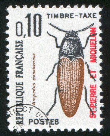 click beetle: SAINT PIERRE AND MIQUELON - CIRCA 1965: stamp printed by Saint Pierre and Miquelon, shows Click Beetle, circa 1969