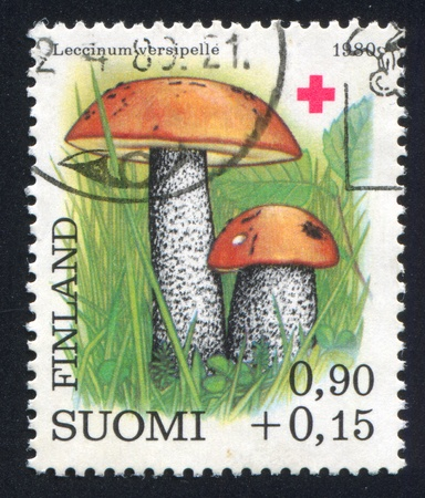 FINLAND - CIRCA 1980: stamp printed by Finland, shows Woolly milkcap, circa 1980 photo