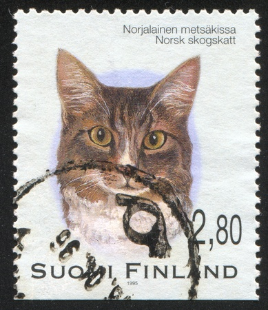 FINLAND - CIRCA 1995:  stamp printed by Finland, shows cat, circa 1995 photo
