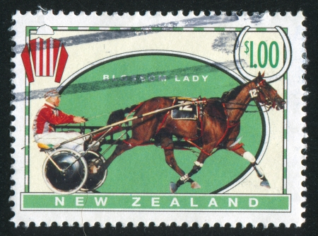 NEW ZEALAND - CIRCA 1996: stamp printed by New Zealand, shows  Racehorse and the cart on the hippodrome, Blossom Lady, circa 1996 photo