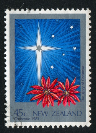 NEW ZEALAND - CIRCA 1983: stamp printed by New Zealand, shows Christmas, Star, poinsettias, circa 1983 Stock Photo - 13891902