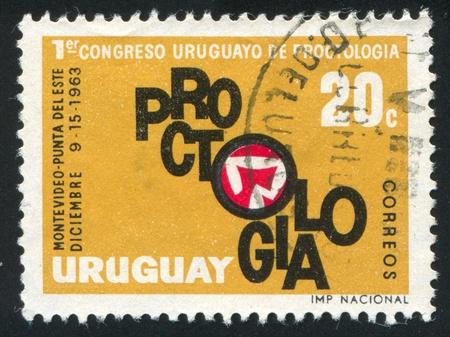URUGUAY - CIRCA 1963: stamp printed by Uruguay, shows Large Intestine, Congress Emblem, circa 1963 Stock Photo - 13891699
