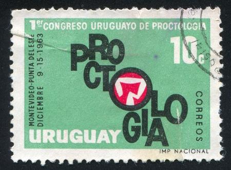 URUGUAY - CIRCA 1963: stamp printed by Uruguay, shows Large Intestine, Congress Emblem, circa 1963 Stock Photo - 13980515