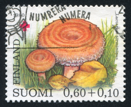 torminosus: FINLAND - CIRCA 1980: stamp printed by Finland, shows Mushrooms, circa 1980 Stock Photo
