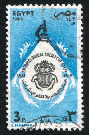 EGYPT - CIRCA 1983: stamp printed by Egypt, shows Entomological society of Egypt emblem, circa 1983 photo