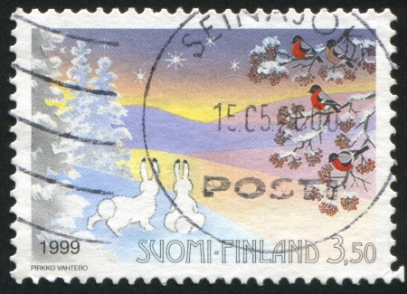 FINLAND - CIRCA 1999: stamp printed by Finland, shows Rabbits and Birds, circa 1999 photo