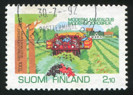 FINLAND - CIRCA 1992: stamp printed by Finland, shows Currant Harvesting, circa 1992 photo