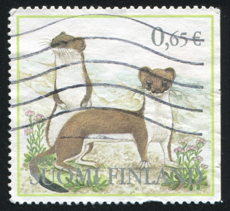 stoat: FINLAND - CIRCA 2004: stamp printed by Finland, shows Forest Animals, Stoat, circa 2004