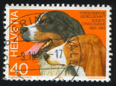 centenary: SWITZERLAND - CIRCA 1983: stamp printed by Switzerland, shows Swiss Kennel Club Centenary, circa 1983