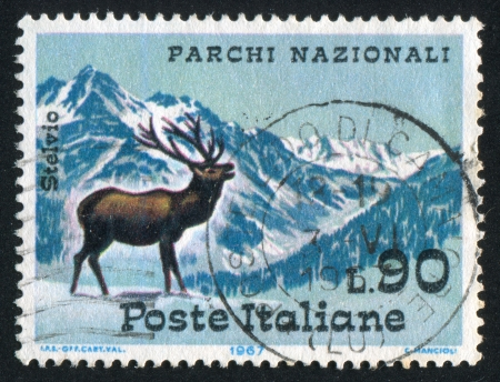 ITALY - CIRCA 1967: stamp printed by Italy, shows Red deer, Stelvio Pass, Ortler Mountains, circa 1967