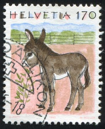SWITZERLAND - CIRCA 1993: stamp printed by Switzerland, shows Donkey, circa 1993 Stock Photo - 14444222