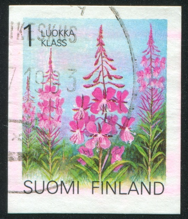 FINLAND - CIRCA 1990: stamp printed by Finland, shows Rosebay willowherb, circa 1990