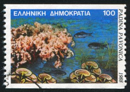 GREECE - CIRCA 1988: stamp printed by Greece, shows Marine Life, Padina pavonica, circa 1988