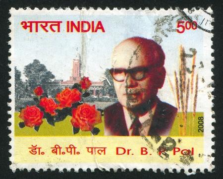 pal: INDIA - CIRCA 2008: stamp printed by India, shows Pal, circa 2008