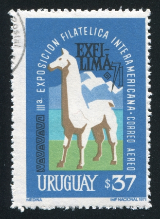 URUGUAY - CIRCA 1971: stamp printed by Uruguay, shows lama and Mountains, circa 1971