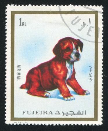 fujeira: FUJEIRA - CIRCA 1980: stamp printed by Fujeira, shows puppy, circa 1980 Editorial