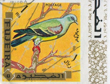 fujeira: FUJEIRA - CIRCA 1972: stamp printed by Fujeira, shows bird, circa 1972 Editorial